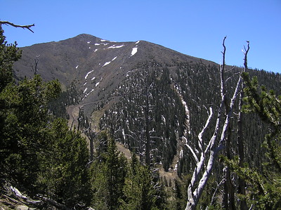 Humphreys Peak Climb - May 2006