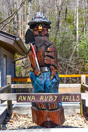 Anna Ruby Falls and Flowers In Helen - 3-18-17