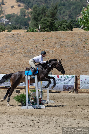 Bear Valley Springs Horse and Mule Show 2018