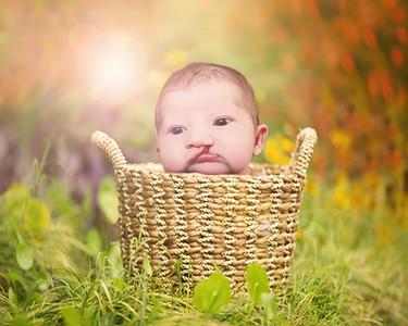 Rylee Newborn Portraits