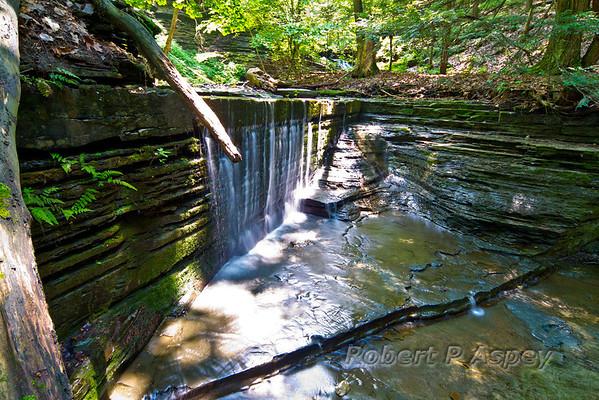 Lick Brook at Sweedler Nature Preserve
