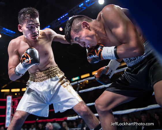 United Boxing Promotions 2016 02 27