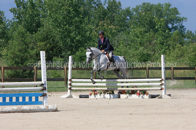 Region 13 Arabian Hunter over Fences