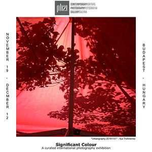 "17.11.2020 - ""Significant Colour"" exhibition"