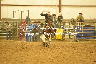 CALF ROPING 1ST GO 11-2016