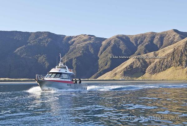 20120727  D'Urville Island trip _MG_5435 WM