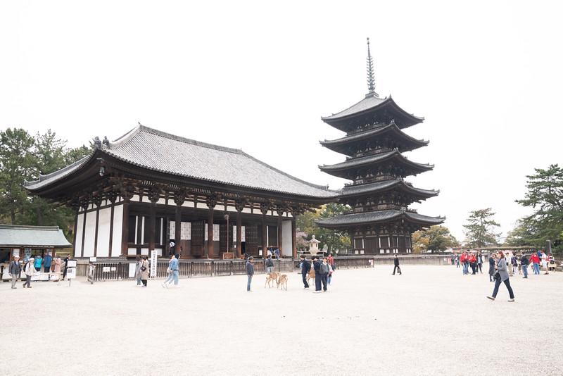 20190411-JapanTour-4898.jpg