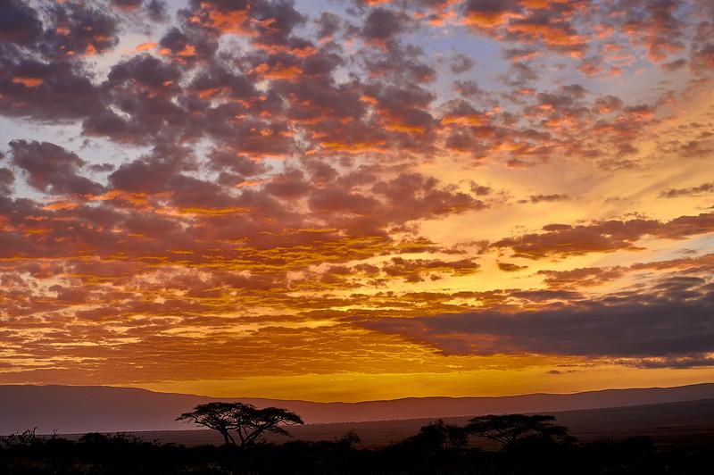 Tanzania 2013 1989.jpg