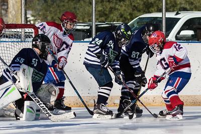 Wings hockey