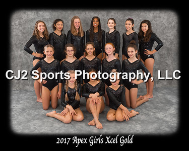 Girls Xcel Gold