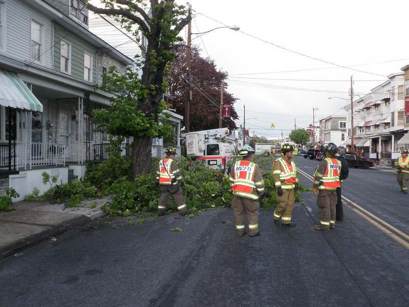mahanoy city tree incident 5-8-2010 021.JPG