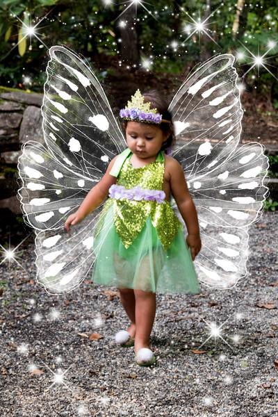 795A1932 fairy.jpg