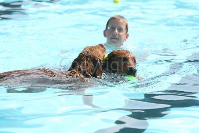 Dog Paddle IC 090407