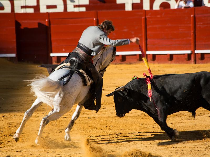 Bullfighting H4.jpg