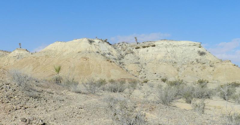 painted dunes8.jpg