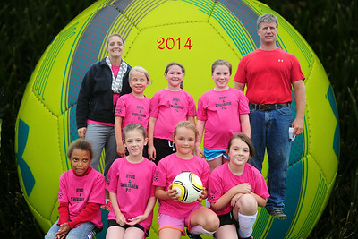 Soccer The Pink Flamingos