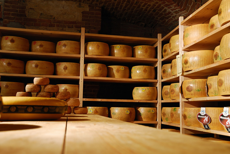 A room full of Parmigiano cheese wheels