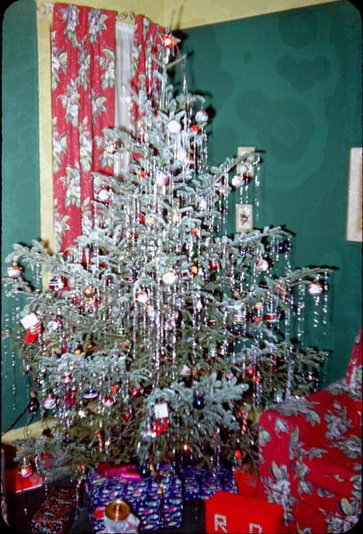 full christmas tree.jpg