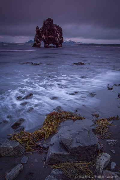 Hvritserkur sea stack, north Iceland