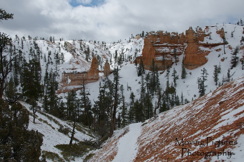 Bryce Canyon National Park - Fairyland Loop Trail - Tower Bridge at left of center