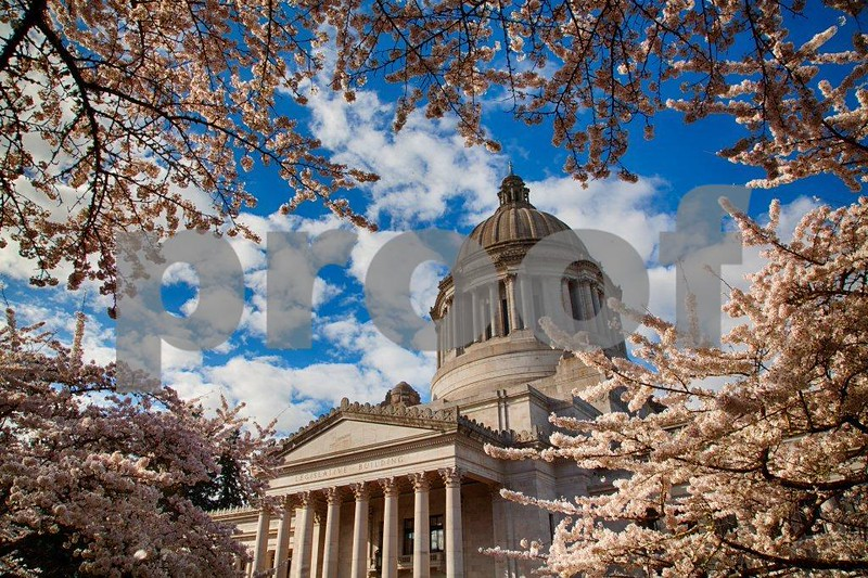 Capitol, spring 3128_HDR.jpg