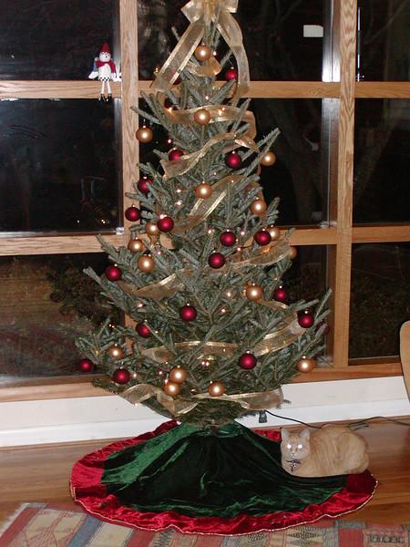 Navidad 2003-15.jpg