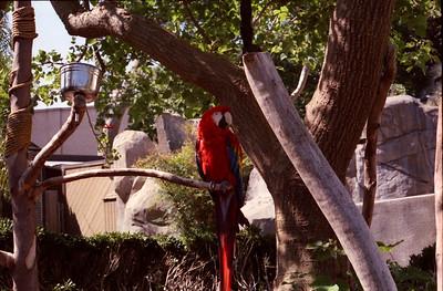 011 - Zoo