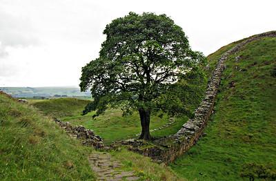 Hadrian's Wall (June 24-July 1)