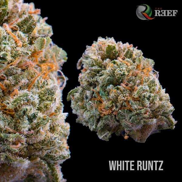 White Runtz.jpg