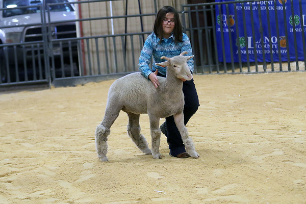 2021 Llano County Junior Livestock Show