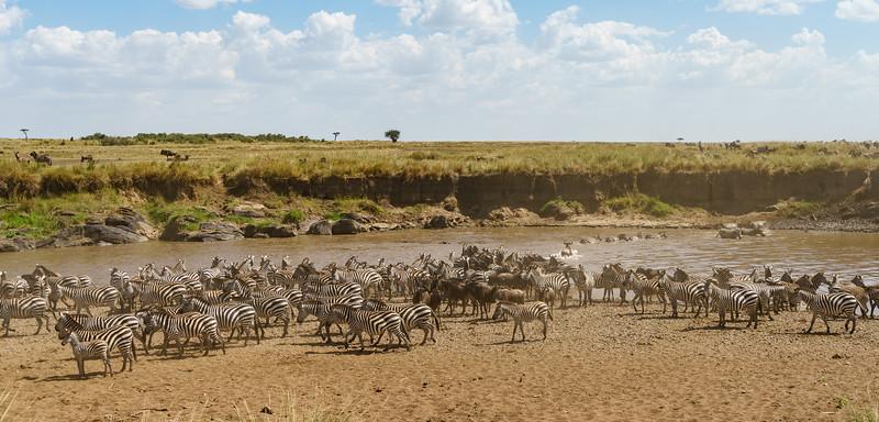 Kenya 2015-02465.jpg