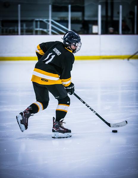 Bruins2-12.jpg