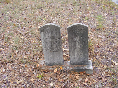 Anderson-Stevens Cemetery