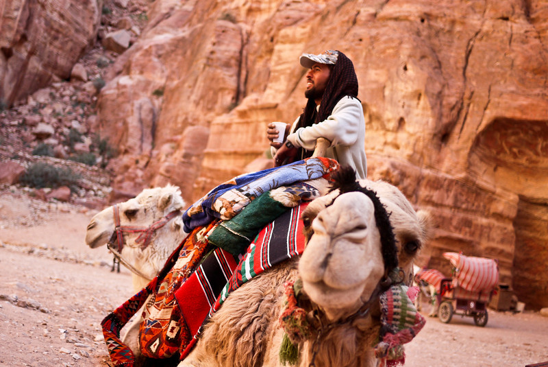 Camel action as the Bedouin wait for riders in Petra, Jordan.