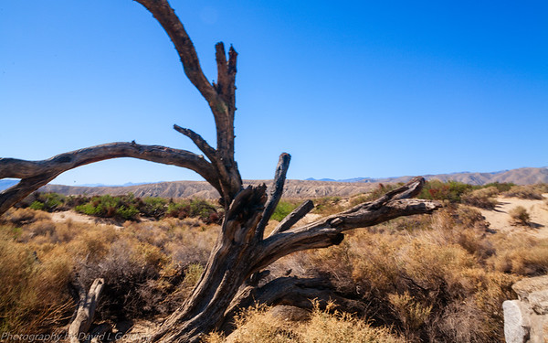 California Deserts Folder