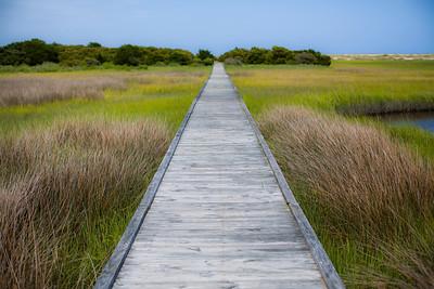 Basin Trail and Zeke's Island Reserve