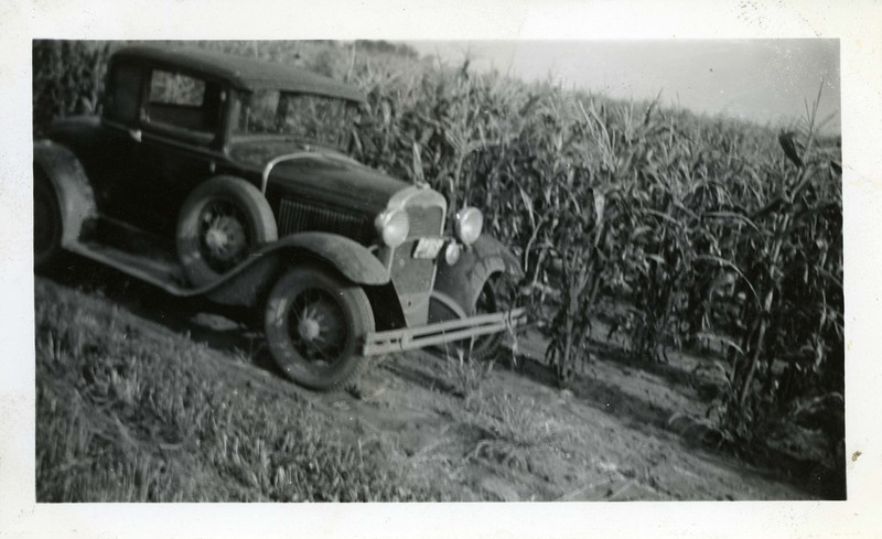 J189.  Biggest corn crop ever - 1937.jpg