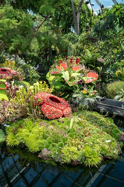 Singapore-19-035.jpg