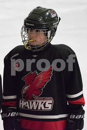 2/12/16 6:35 Darien Youth Hockey Squirt B vs Providence Capitals SquirtAA