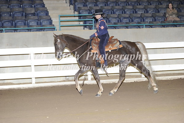 CLASS 24  COUNTRY PLEASURE AM OWNED & TRAINED SPEC