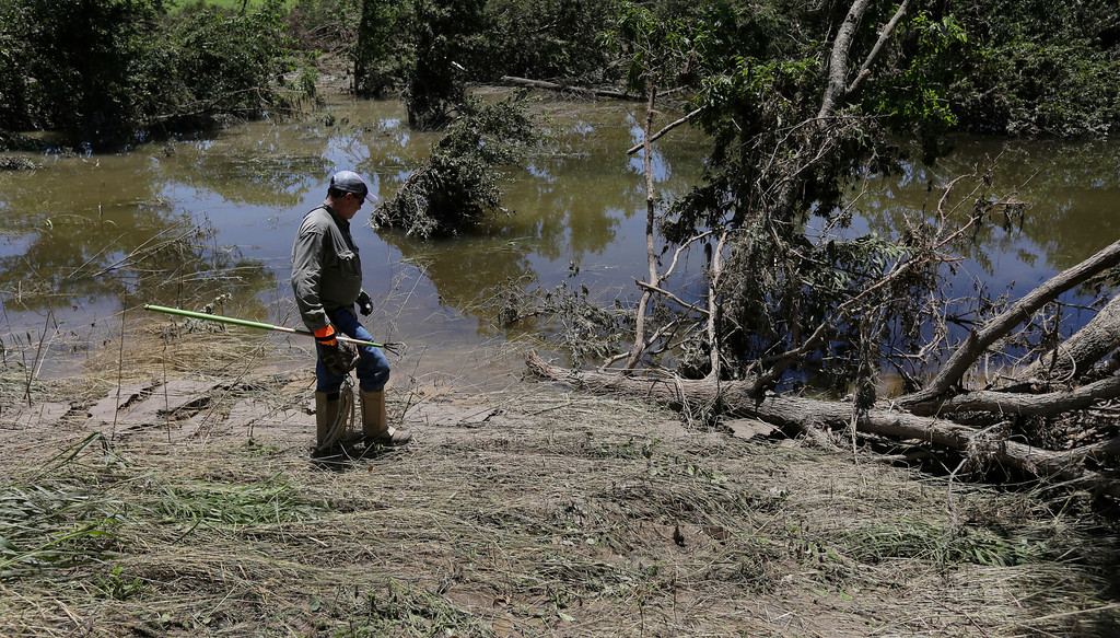 . Volunteer Terry Arnold helps search along the Blanco River, Friday, May 29, 2015, in San Marcos, Texas. Search efforts continue for those persons who went missing from the Memorial Day weekend floods in Central Texas. (AP Photo/Eric Gay)
