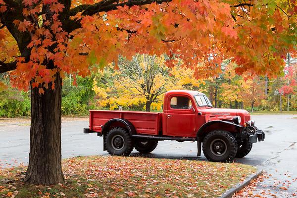 Classic Cars (Art on wheels)