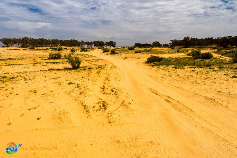 Desert-of-Zin-0660.jpg