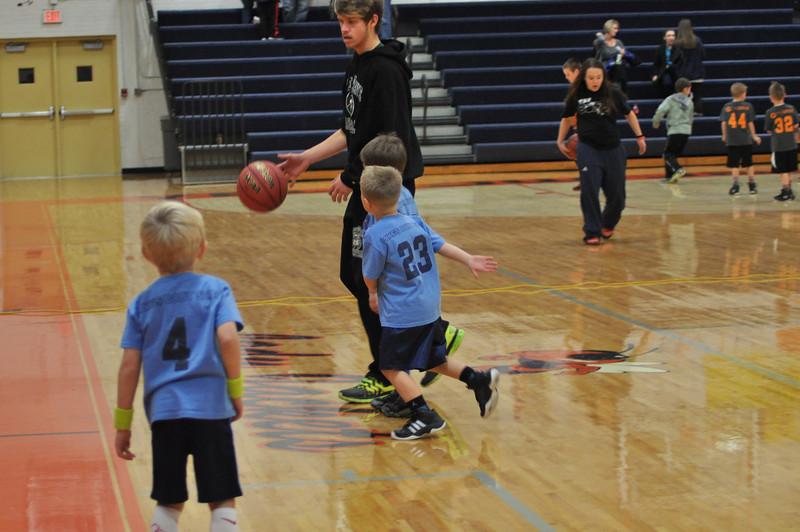 basketball-sharks-koc-0538.jpg