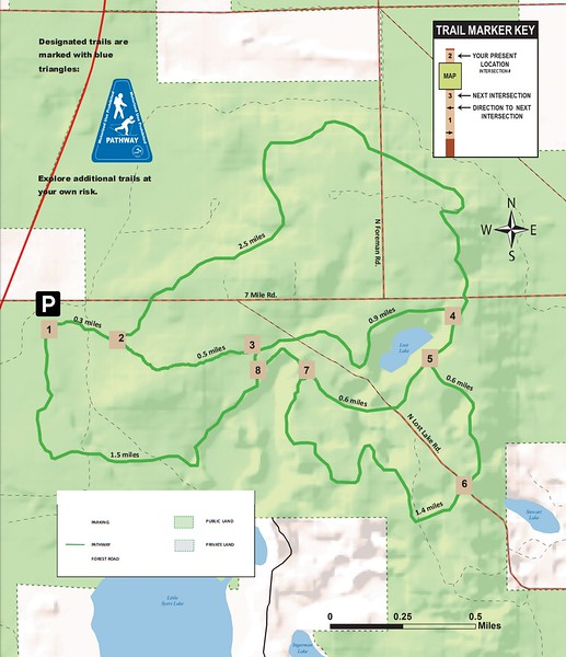 Pine Valley Pathway