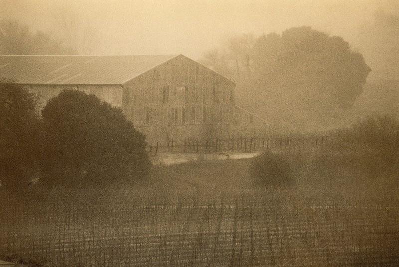 Napa in Fog, California