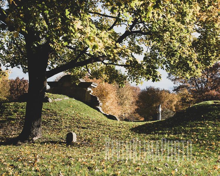 Graceland110218-282.jpg