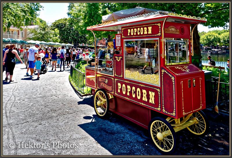 Disneyland Leica Q-16.jpg