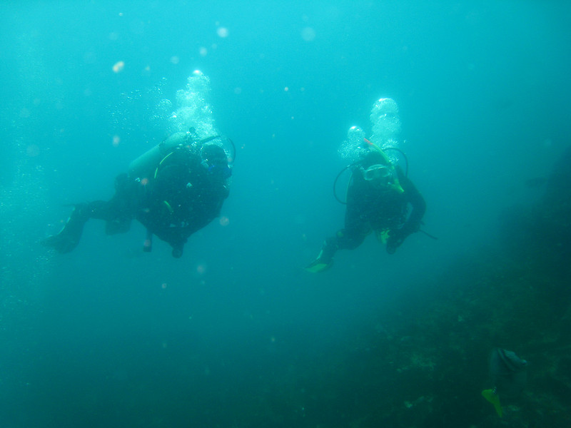 Diving in the Galapagos (194 of 392)