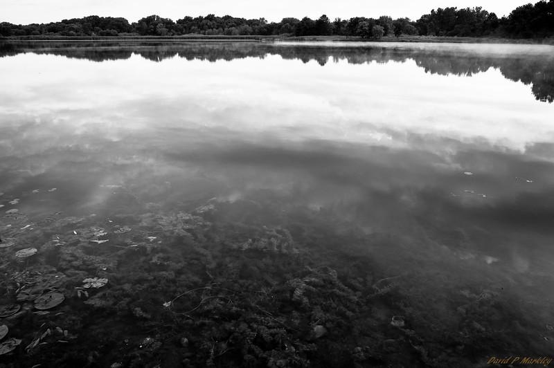 Reflection Layers